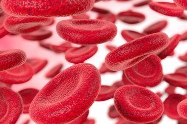 Grafische Darstellung von roten Blutzellen