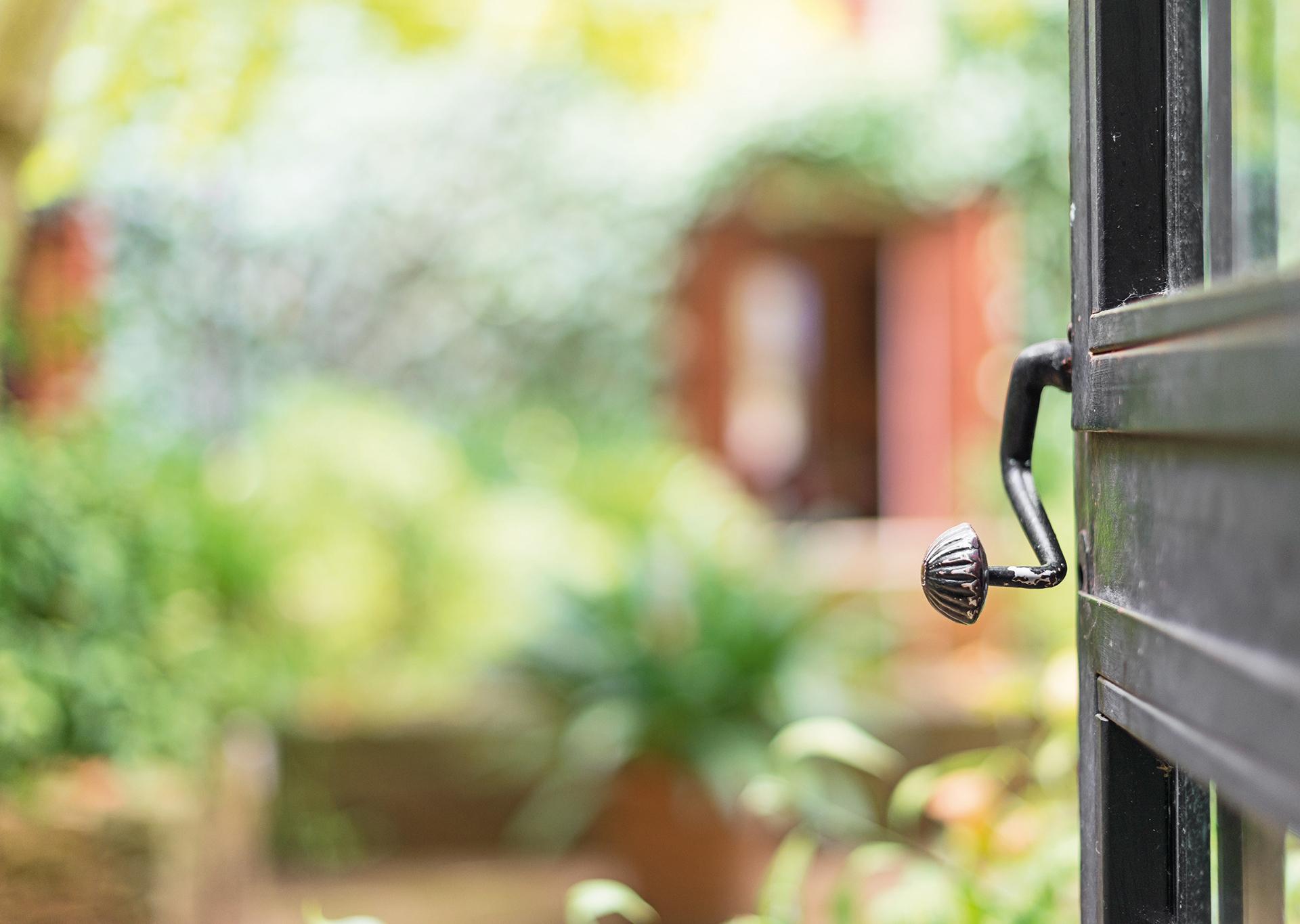 Offene Tür mit Blick in den Garten